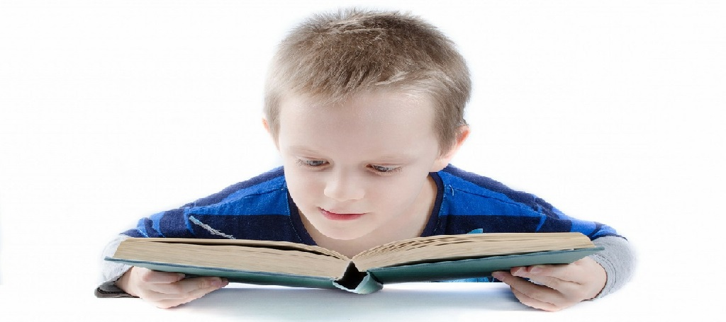 Boy reading book